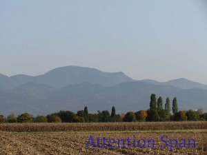 Autumn cornfields in foreground, hazy mountains beyond tree-line