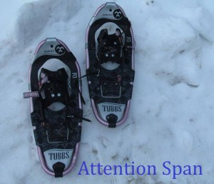 two snowshoes set in alternate step formation on crusty snow