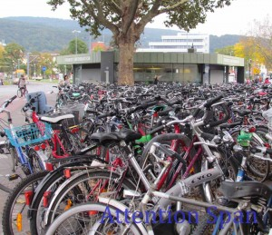 bikes parked at train station, tree and tourist info booth in background
